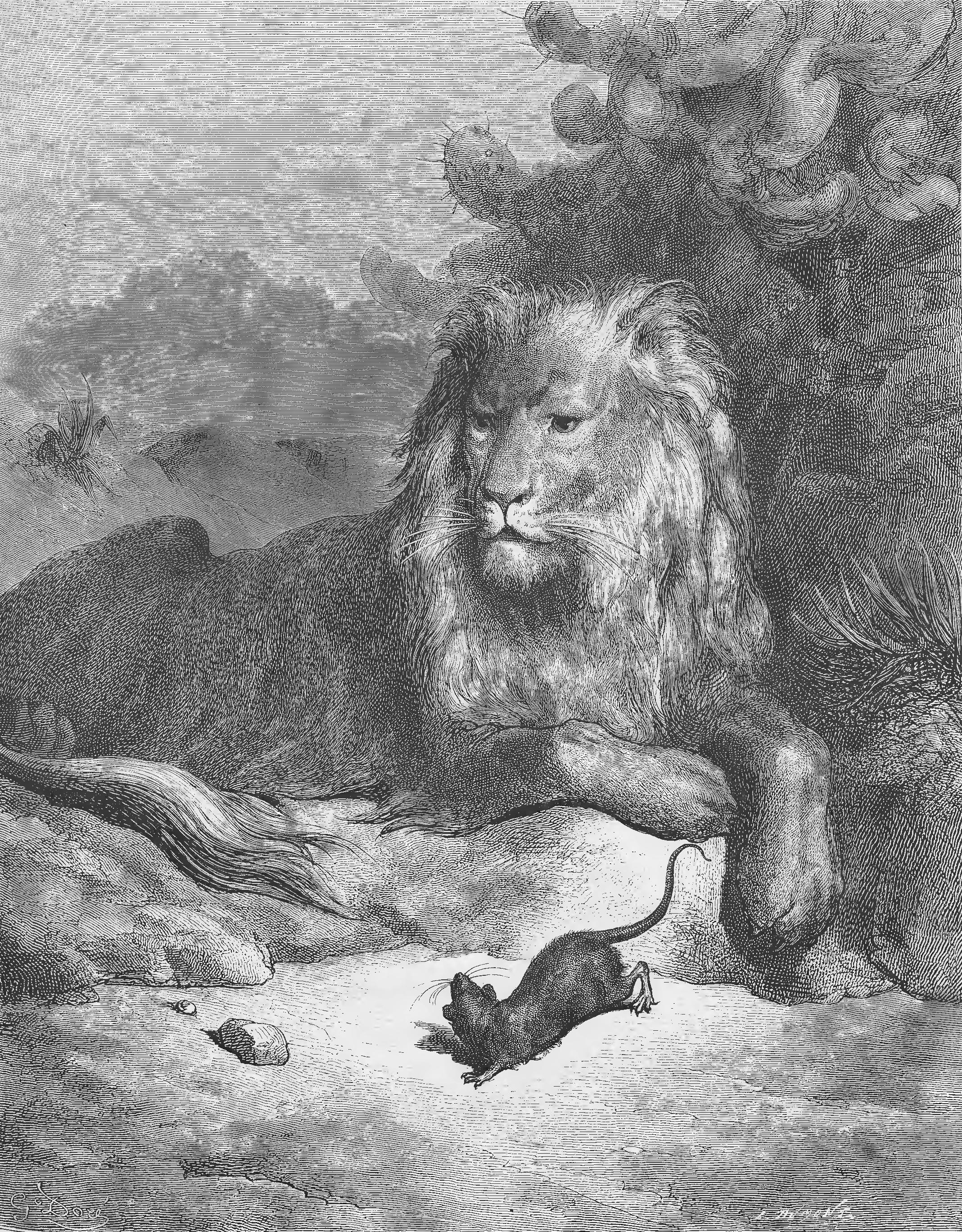 Le lion et le rat - Image le lion et le rat ...