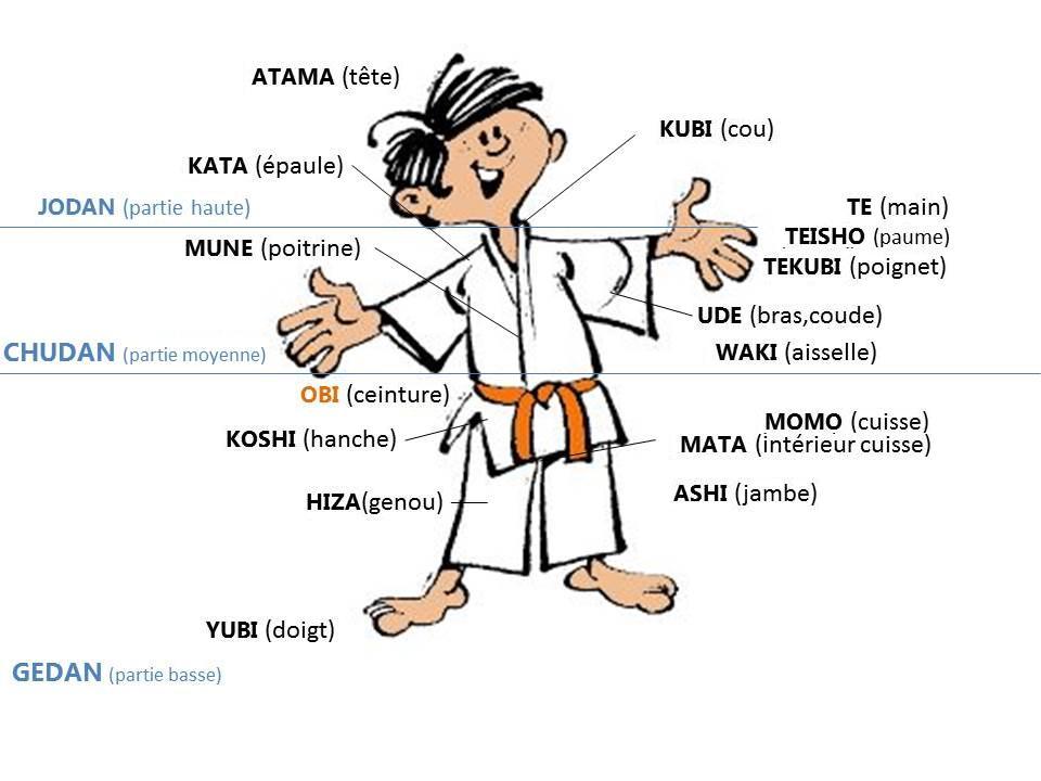 Les pratiquants de jùdô (les jùdôka) portent une tenue en coton renforcée  souvent appelée à tort kimono de jùdô. Kimono étant le nom générique de la  tenue ... 3a75fe097dc